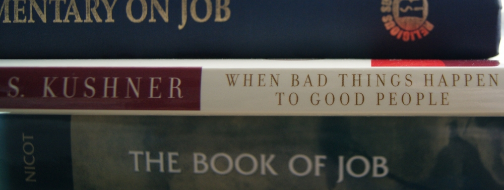 a review of harold kushners book when bad things happen to good people